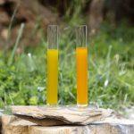 la luce danneggia l'olio extra vergine di oliva