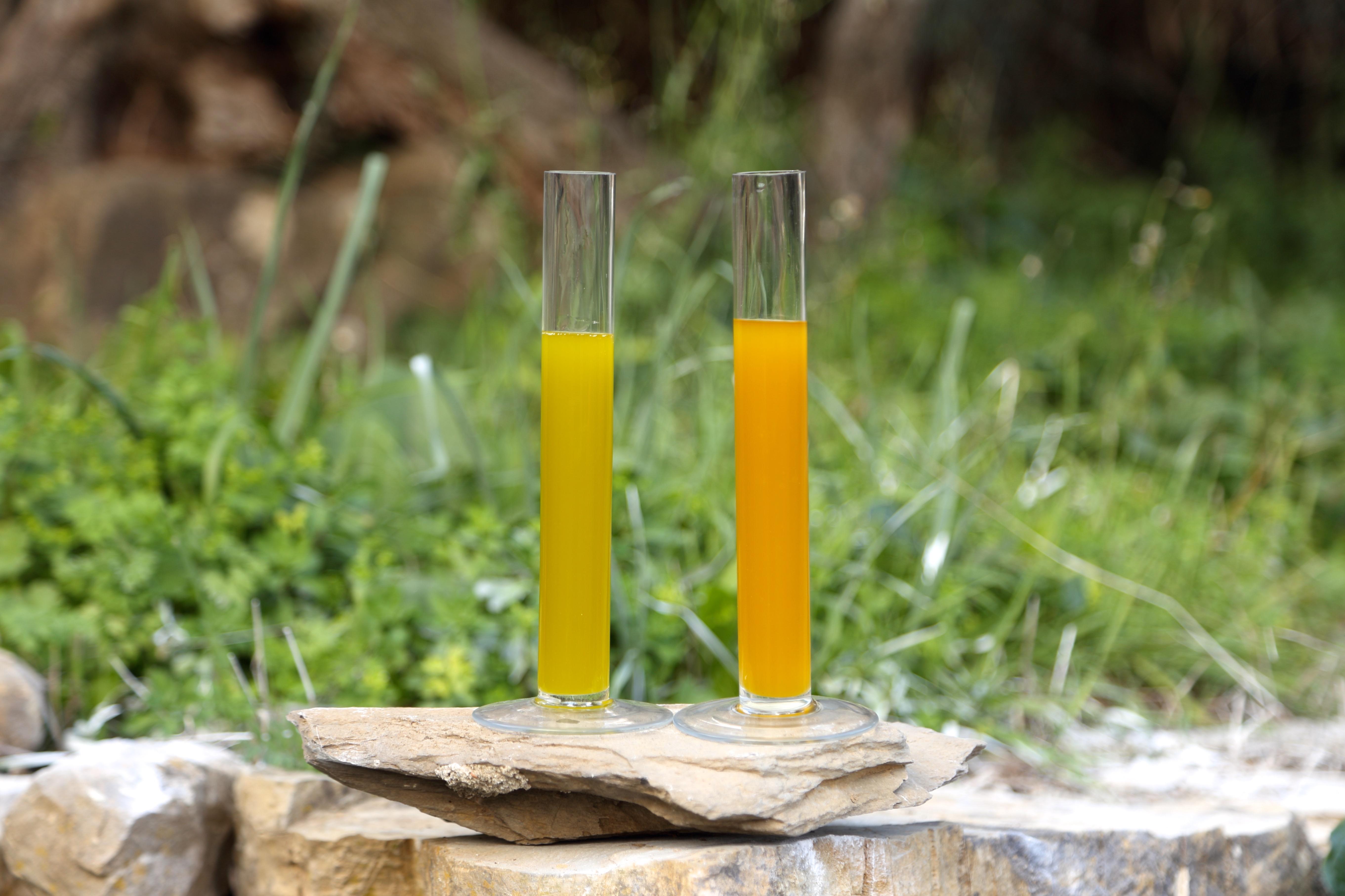 3 Consigli per conservare il tuo Olio Extra Vergine di Oliva