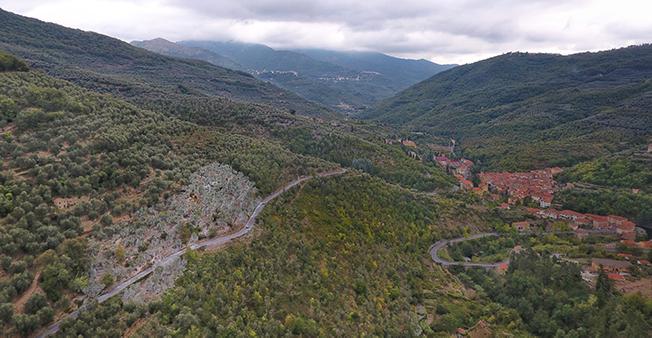 Oliveto biologico Tèra de Prie trattato con caolino AgriBioClay nell'Alta Valle Impero